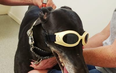 New Laser Therapy